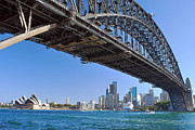 Sydney Skyline Art - The Coathanger by Terry Everson