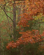 Fall Leaves Posters - The Color Of Fall Poster by Steven Richardson