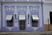 Purple Awnings Prints - The Color Purple Print by Timothy Johnson