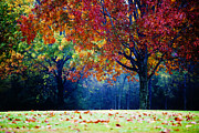 Slightclutter Mist Prints - The Colorful Landscape Print by Katya Horner