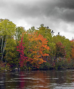 Fall Leaves Photos - The Colors of Autumn - Maine by Brendan Reals