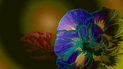 Alejandro Mahias - The Colors of Flower...