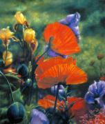 Red Poppies Pastels - The Colors of Giverny by Barbara Jaenicke