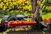 Farmscapes Metal Prints - The Colors of Harvest Season in New England Metal Print by Thomas Schoeller