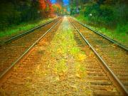 Autumn Trees Prints - The Colour Along the Tracks Print by Tara Turner