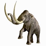 Isolated Digital Art - The Columbian Mammoth by Corey Ford