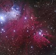 Monoceros Prints - The Cone Nebula And Christmas Tree Print by Don Goldman
