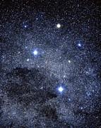 Science Photo Library Art - The Constellation Of The Southern Cross by Luke Dodd