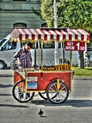 Corn Wagon Prints - The Corn Vendor Print by Michael Garyet