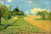 Corn Paintings - The Cornfield by Alfred Sisley