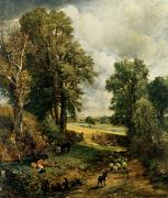 Donkey Painting Prints - The Cornfield Print by John Constable