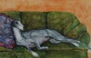 Greyhound Prints - The Couch Potatoe Print by Frances Marino