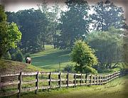 Equine Prints - The countryside in Winston Salem North Carolina Print by Terry Kirkland Cook
