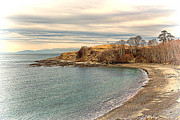 Beach Photograph Photos - The Cove - San Juan Island Washington State by James Heckt