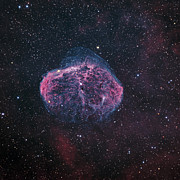 Starfield Posters - The Crescent Nebula Poster by Don Goldman
