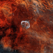 Soap Bubble Nebula Posters - The Crescent Nebula With Soap-bubble Poster by Rolf Geissinger