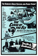 1960s Movies Posters - The Curse Of The Fly, 1965 Poster by Everett