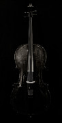 Cello Art - The Curve of Her - Two by Sam Hymas