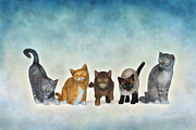 Tabby Art - The Cute Ones by Jutta Maria Pusl
