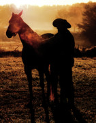 Equine Photo Posters - The Day Begins Poster by Ron  McGinnis