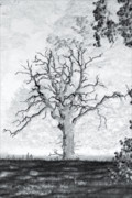 White River Scene Photo Originals - The Dead Tree by Paul  Mealey