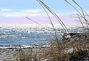 Cape Cod Paintings - The Dennis Breeze by Douglas Auld