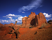 Stock Photo Digital Art Metal Prints - The Devils Garden in Arches National Park Metal Print by Daniel Chui