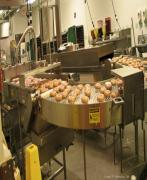The Donut War Machine Print by Carol F Austin