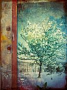 Photomanipulation Prints - The Door and the Tree Print by Tara Turner