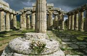 Campania Region Framed Prints - The Doric Columns Of The Greek Temple Framed Print by Sisse Brimberg