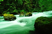 Moss Green Framed Prints - The Dosewallups River  Framed Print by Jeff  Swan