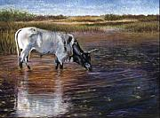 Cattle Pastels Prints - The Drink Print by Susan Jenkins