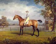 Races Paintings - The Duke of Hamiltons Disguise with Jockey Up by George Garrard
