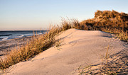 Atlantic Beaches Prints - The Dunes of Jones Beach Print by JC Findley