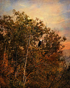 Autumn Landscape Art - The Eagles Perch by Jai Johnson