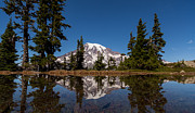 Reflected Framed Prints - The Edge of Rainier Framed Print by Mike Reid