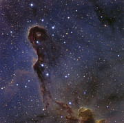 H Ii Regions Prints - The Elephants Trunk Nebula In The Star Print by Ken Crawford