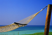 Hammock Prints - The Emerald Coast Print by Thomas R Fletcher