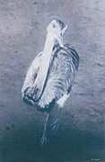 Emu Paintings - The Emu by Terry Forrest
