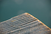 Close Ups - the end of the Dock by Randy J Heath