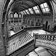 Museum Metal Prints - The Escher View Metal Print by Martin Williams