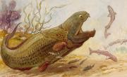 The Extinct Dinichthys Fish Could Grow Print by Charles R. Knight