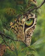 Forest Animal Paintings - The Eye by Myra Goldick