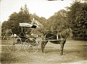 Early Photography Originals - The Family Transport by Jan Faul