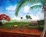 Cuban Framed Prints - The farm Framed Print by Jose Manuel Abraham