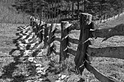 Susan Leggett Photo Metal Prints - The Fence Metal Print by Susan Leggett