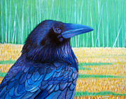 Corvid Prints - The Field of Dreams Print by Brian  Commerford