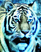 The Tiger Digital Art Metal Prints - The Fierce Tiger Metal Print by Bill Cannon