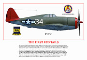 P-51-d Mustang Fighter Prints - The First  Red Tails Print by Jerry Taliaferro