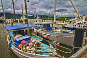 Fishing Trawler Framed Prints - The Fishing Trawler Framed Print by Douglas Barnard